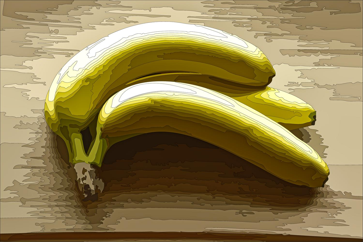 - Bananas with isochromatic zones delineated -  - taken with Sony DSC-R1 - Tony Karp, design, art, photography, techno-impressionist, techno-impressionism, aerial photography , drone , drones , dji , mavic pro , video , 3D printing - Books -