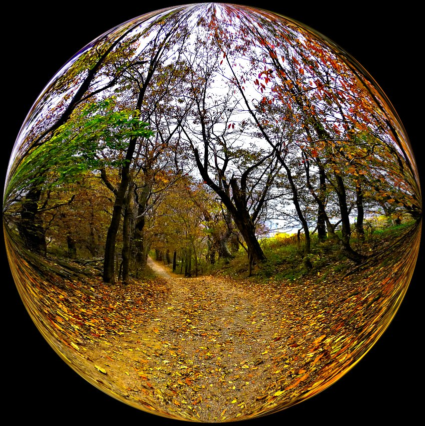 - A trail in a bubble at Sky Meadows -  Tony Karp's Bubble Pictures - From 1959 to 2013 - Tony Karp, design, art, photography, techno-impressionist, techno-impressionism, aerial photography , drone , drones , dji , mavic pro , video , 3D printing - Books -