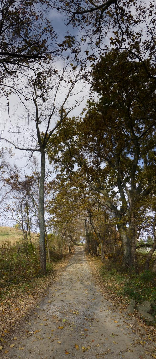 - A vertical panorama of the trail at Sky meadows <br>--- Click to see ORIGINAL --- - Sky Meadows State park - Virginia - Cows - Panasonic DMC-ZS20 - Tony Karp, design, art, photography, techno-impressionist, techno-impressionism, aerial photography , drone , drones , dji , mavic pro , video , 3D printing - Books -