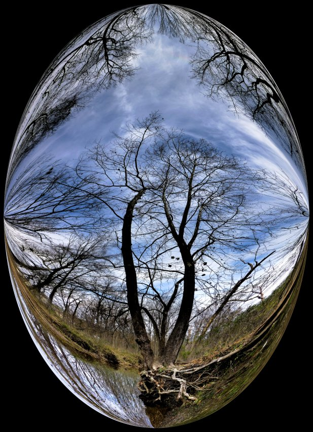 - Old scoured tree at Bull Run -  Tony Karp's Bubble Pictures - From 1959 to 2013 - Tony Karp, design, art, photography, techno-impressionist, techno-impressionism, aerial photography , drone , drones , dji , mavic pro , video , 3D printing - Books -
