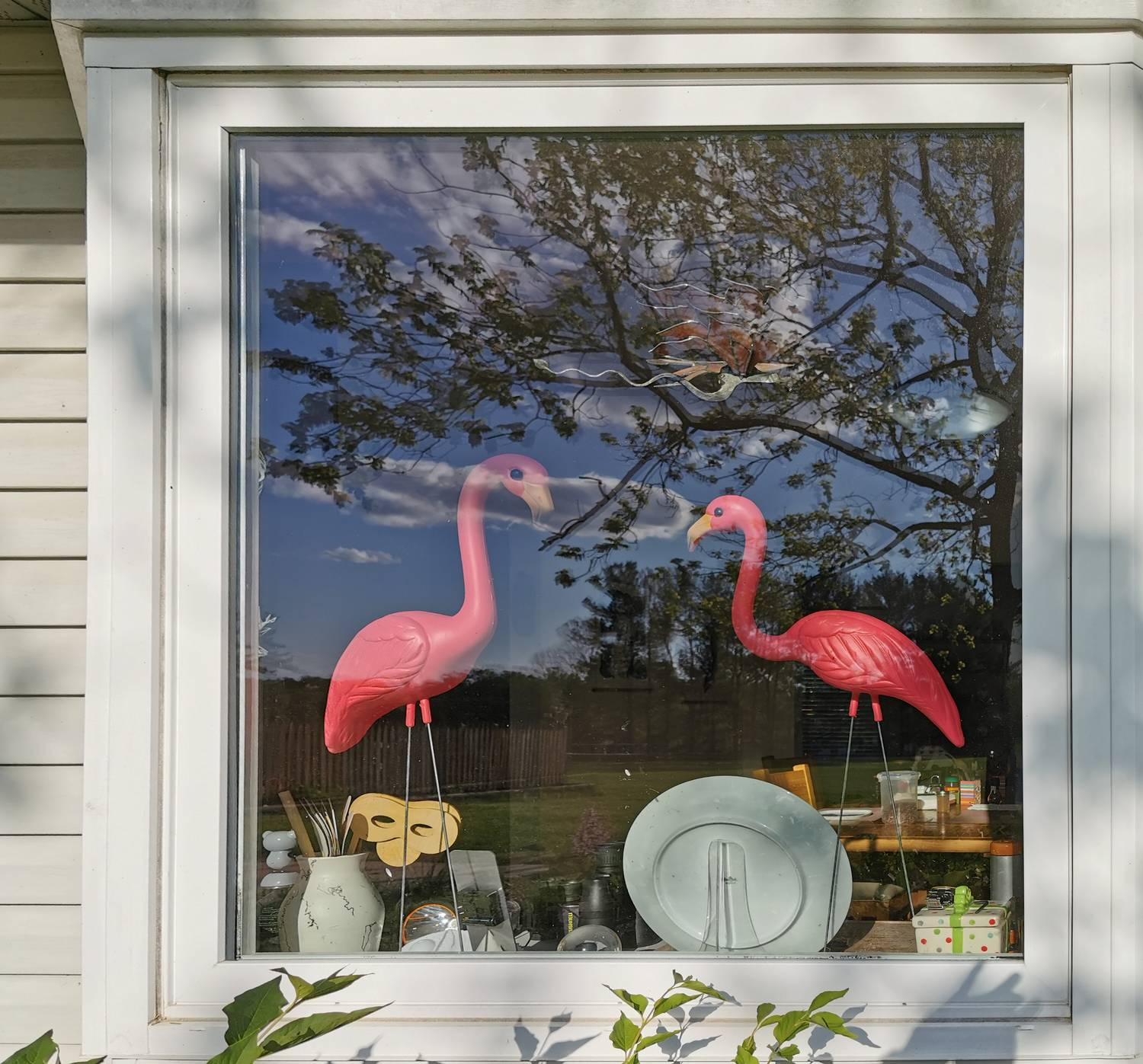 - My fix for bird strikes on my window - Bird strikes, flamingos, preventing bird strikes, pink - Tony Karp, design, art, photography, techno-impressionist, techno-impressionism, aerial photography , drone , drones , dji , mavic pro , video , 3D printing - Books -